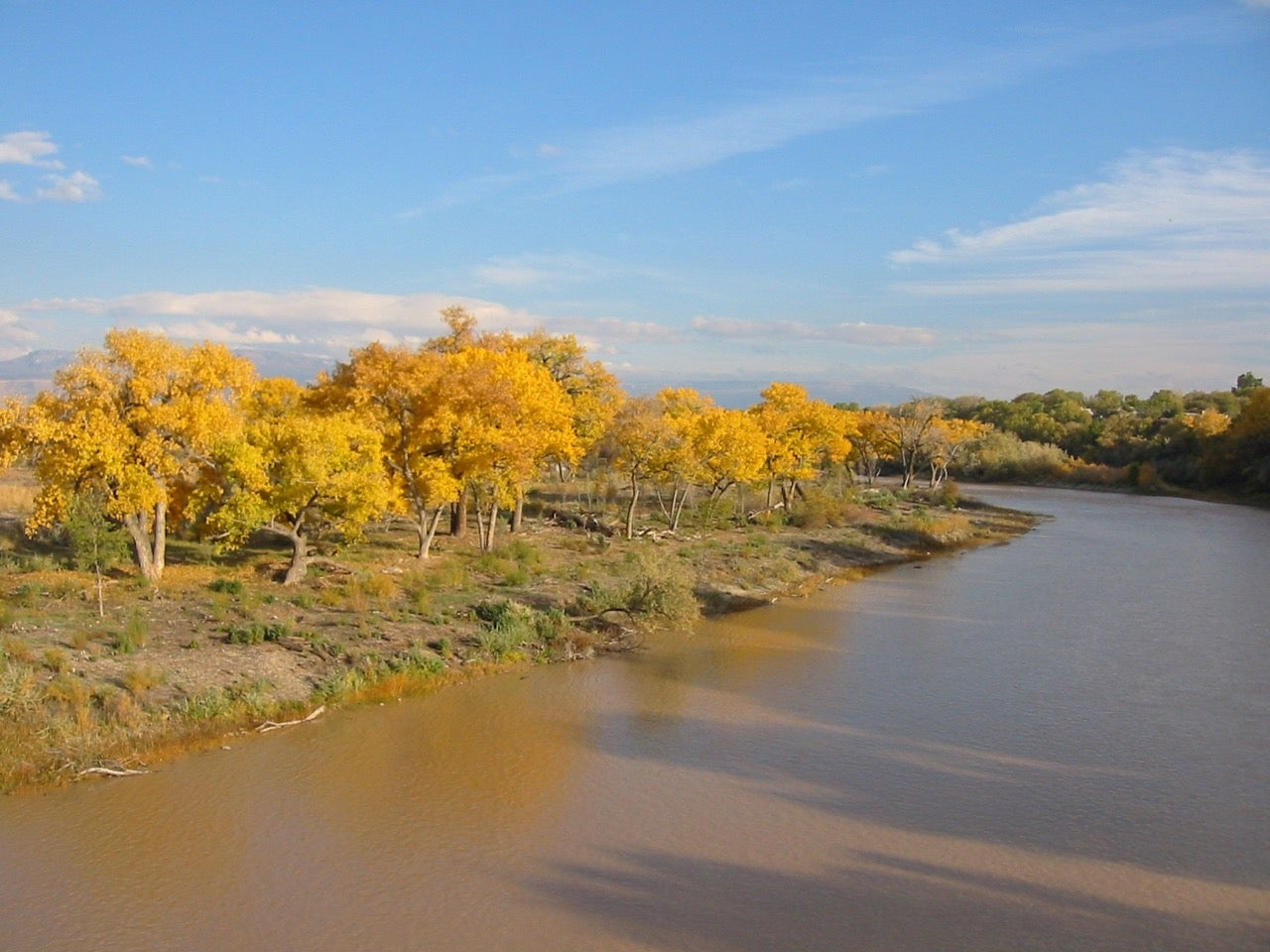 Applied plant ecologist Anna Sher presents her research on April 6 at ASU Polytechnic campus