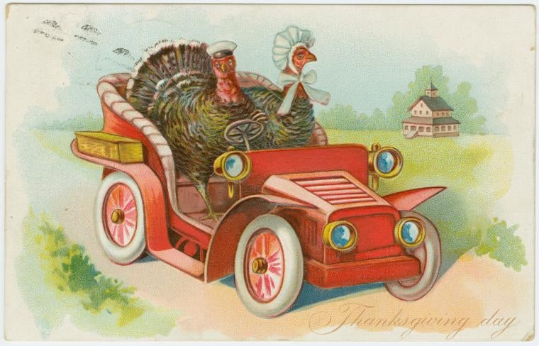 illustration of two turkeys driving a car