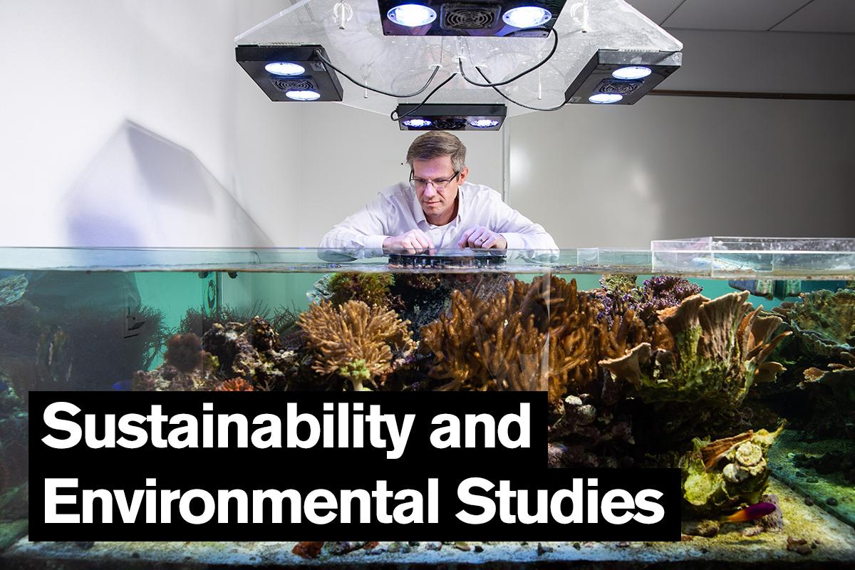 Sustainability and Environmental Studies